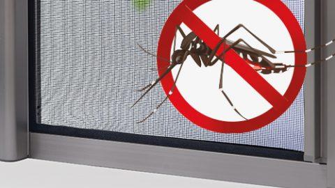Chọn cửa lưới chống muỗi nào phù hợp cho gia đình bạn?